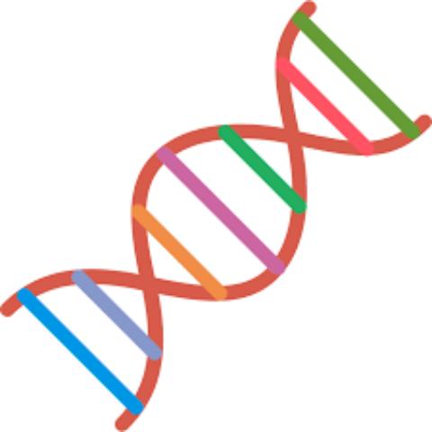 Free Advanced Interpretation of Your 23andMe Raw Data